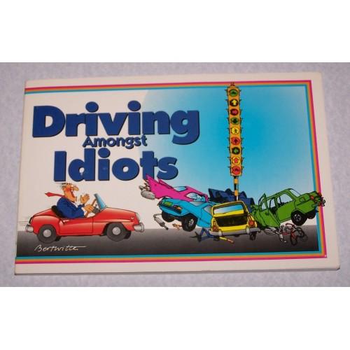 Driving amongst idiots - Bert Witte