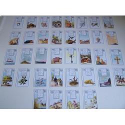 LeNormand waarzegkaarten met werkboekje