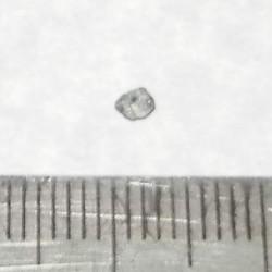 Blauwgroene Diamant - Zuid-Afrika - geboord - steen GBGF