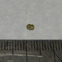 Gele Diamant - Zuid-Afrika - steen J