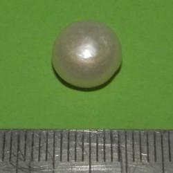 Witte Parel AAAD - Australië - 10.5mm