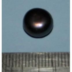 Zwarte Parel ZAE - 9,9mm
