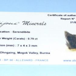 Serendibiet ACA - Birma - met certificaat