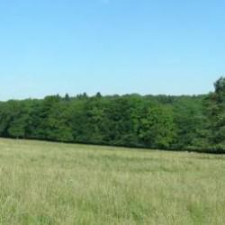 Landschap D - achtergrond decor voor modelbaan of diorama