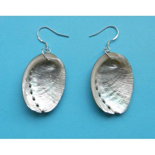 Abalone schelp oorbellen