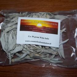 Californische White Sage / Witte Salie - los